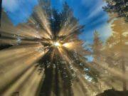 """""""Жажда за живот"""" спечели фотоконкурса за Деня на Земята в Хасково"""