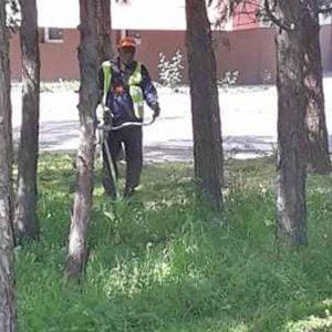 """След читателски сигнал окосиха избуялата трева в """"Орфей"""""""