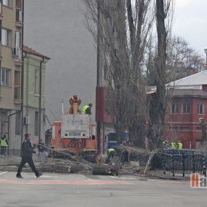 Снимка на деня: Затворен булевард